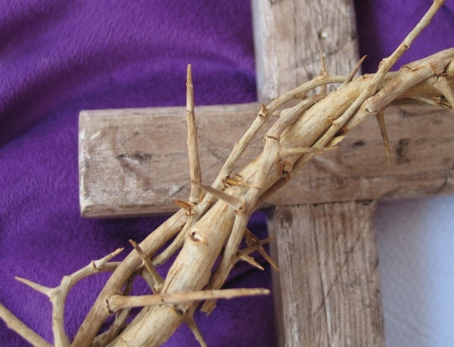 Lenten Reflections – Together Let Us Welcome The Stranger
