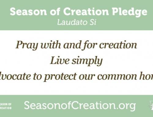 Season of Creation, September 1 – October 4, 2017
