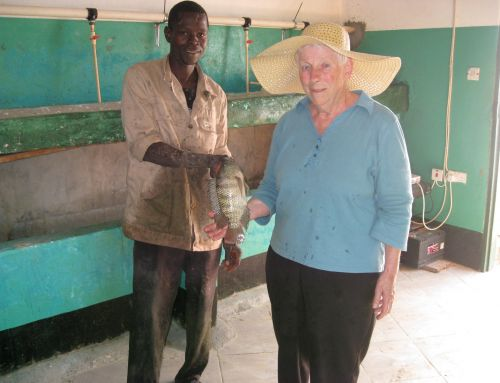 Newsletter from Sister Virginia McCall in Kaoma, Zambia, Africa