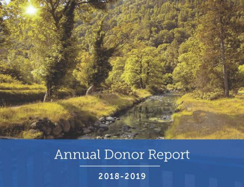 2018-2019 Annual Donor Report